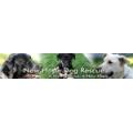 New Hope Dog Rescue Inc