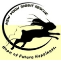 New Moon Rabbit Rescue
