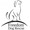 Freedom Dog Rescue