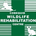 Cobequid Wildlilfe Rehabilitation Centre